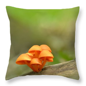 Throw Pillow featuring the photograph Orange Mushrooms by JD Grimes