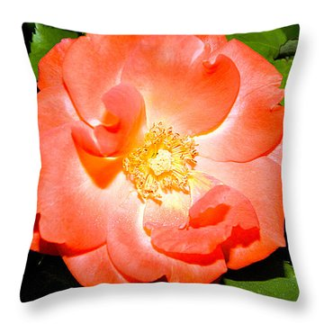 Throw Pillow featuring the photograph Orange Rose  by Ester  Rogers