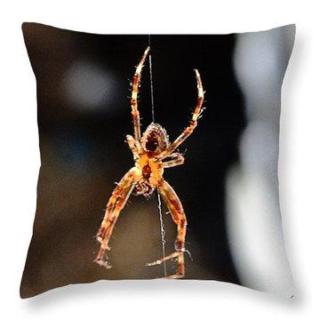 Orange Spider Throw Pillow