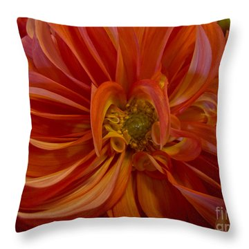 Orange You Happy Throw Pillow by Arlene Carmel