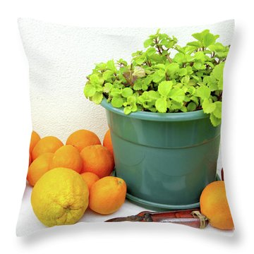 Oranges And Vase Throw Pillow by Carlos Caetano