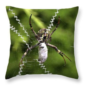 Throw Pillow featuring the photograph Orb Weaver by Joy Watson