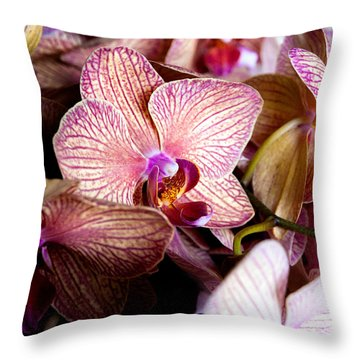 Orchid IIi Throw Pillow by Christopher Holmes