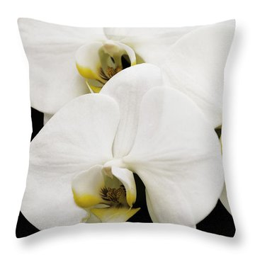 Orchid Throw Pillow by Paul Plaine