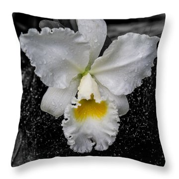 Orchid Shower Throw Pillow