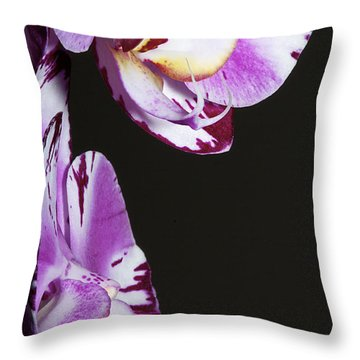Orchid Stem Throw Pillow by Phyllis Denton
