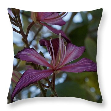 Orchid Tree Throw Pillow by Joseph Yarbrough