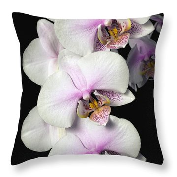 Orchids Throw Pillow by David Chapman