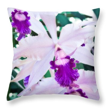 Orchids White And Purple Throw Pillow by Steven Sparks
