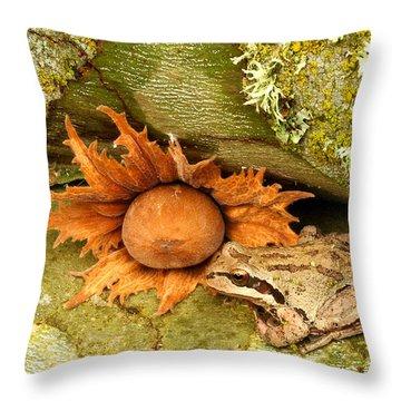 Oregon Combo Throw Pillow by Jean Noren