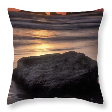 Oregon Sunset Throw Pillow by Dave Mills