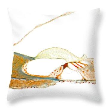 Organ Of Corti, Human Throw Pillow