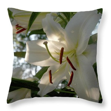 Throw Pillow featuring the photograph Oriental Lilies by Wanda Brandon