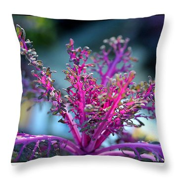 Throw Pillow featuring the photograph Ornamental Cabbage by Judi Bagwell