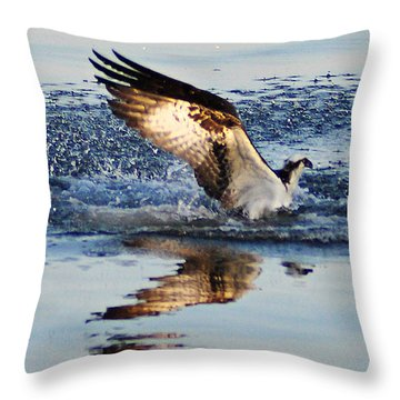 Osprey Crashing The Water Throw Pillow by Bill Cannon