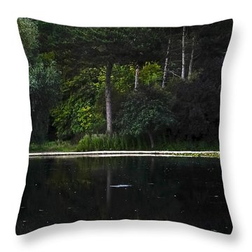 Other Side Throw Pillow by Svetlana Sewell