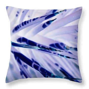 Throw Pillow featuring the photograph Other World I by Carolina Liechtenstein
