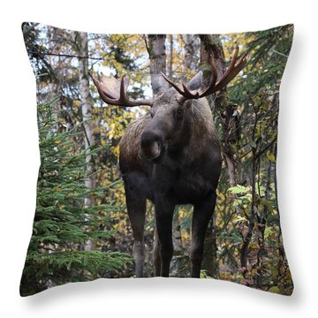 Out In The Open Throw Pillow