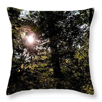 Out Of The Darkness He Calls Throw Pillow by Maria Urso