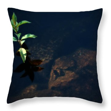 Out Of The Water Comes Shadows Throw Pillow by Karol Livote