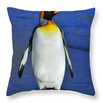 Out Of Water Throw Pillow by Tony Beck