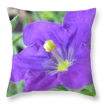 Throw Pillow featuring the photograph Outstanding Photography by Tina Marie