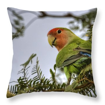 Over My Shoulder  Throw Pillow