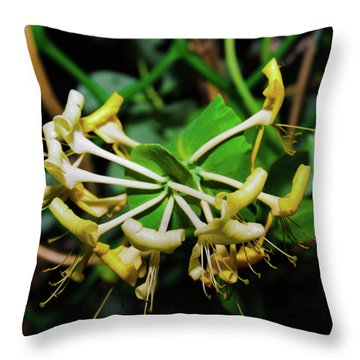 Overblown Perfoliate Throw Pillow