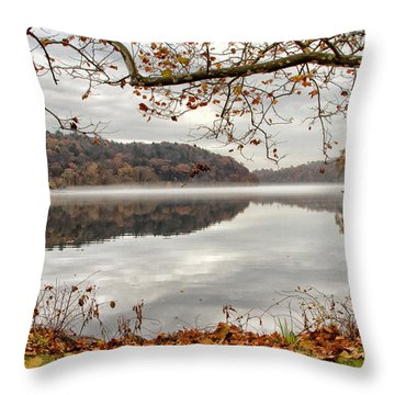Overlooking The River Throw Pillow by Karol Livote