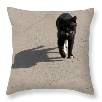 Owner Throw Pillow by Michael Goyberg