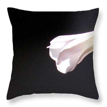 Throw Pillow featuring the photograph Oxalis Bud by Kume Bryant
