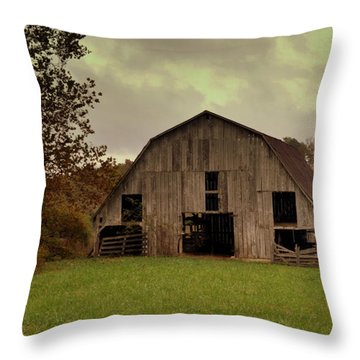 Ozark Barn 5 Throw Pillow by Marty Koch