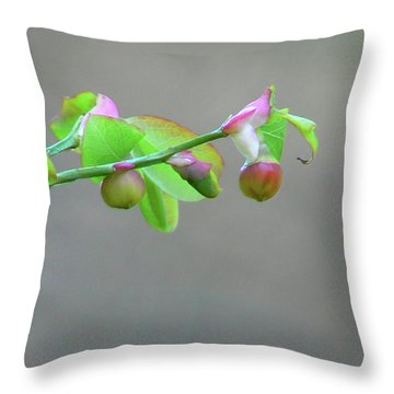Pacific Huckleberry Throw Pillow by Pamela Patch