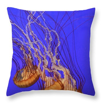 Pacific Sea Nettle Throw Pillow