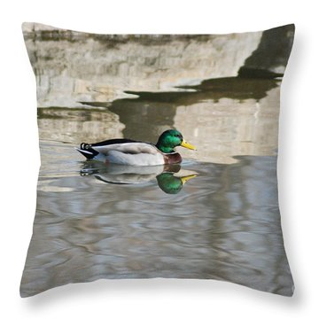 Throw Pillow featuring the photograph Paddling Mallard by Mark McReynolds