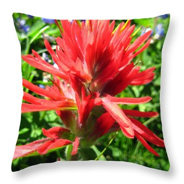 Throw Pillow featuring the photograph Paintbrush by Kathy Bassett
