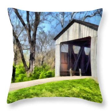 Painted Bridge Throw Pillow by Richard Wallace