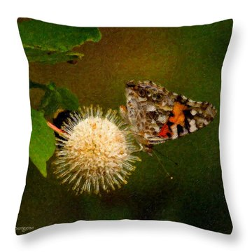 Painted Lady Impasto Throw Pillow by Travis Burgess