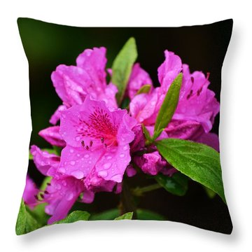 Throw Pillow featuring the photograph Painted Pink by Mary Zeman