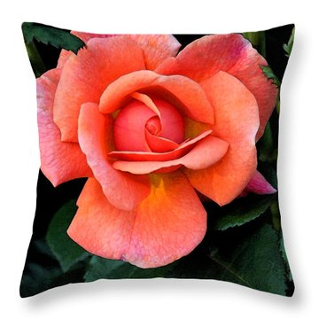 Painted Rose Throw Pillow by Cindy Manero