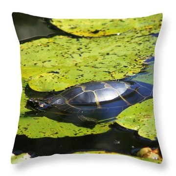 Painted Turtle On Water Lilies Throw Pillow