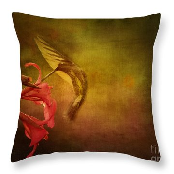 Throw Pillow featuring the photograph Painterly Ballet by Anne Rodkin