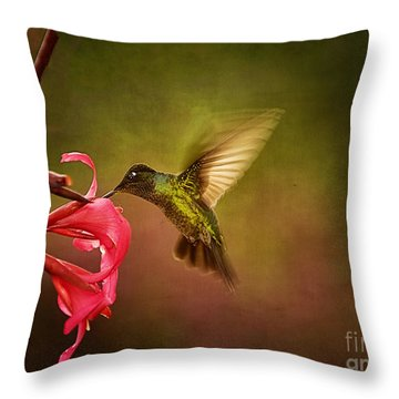 Throw Pillow featuring the photograph Painterly Hummingbird #1 by Anne Rodkin