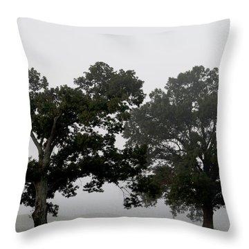 Pair Throw Pillow by Amanda Barcon