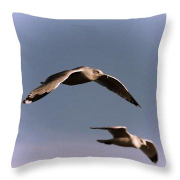 Pair Of Gulls Throw Pillow by Karol Livote