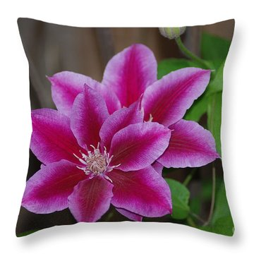 Pair Of Pink Clematis Throw Pillow