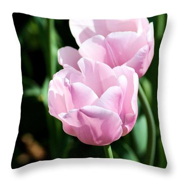 Pair Of Pink Tulips Throw Pillow