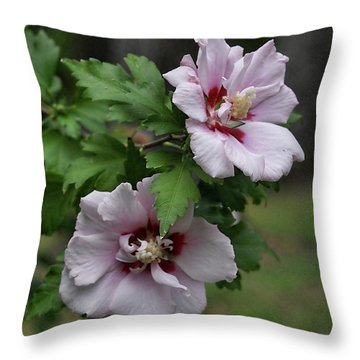 Throw Pillow featuring the photograph Pair Of Rose Of Sharon by Rick Friedle