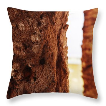 Palm And Wall 2 Throw Pillow