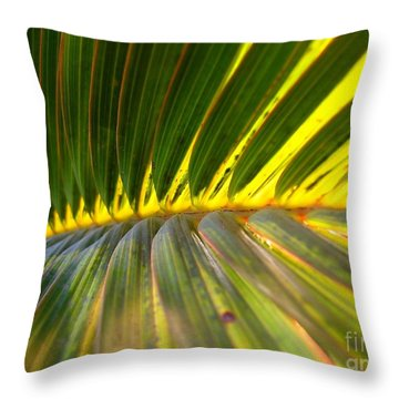 Palm Fronds Illuminated By The Sun Throw Pillow by Yali Shi